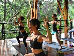 21 Day 200 Hour Vinyasa Yoga Teacher Training Certification Intensive Immersion in Montezuma
