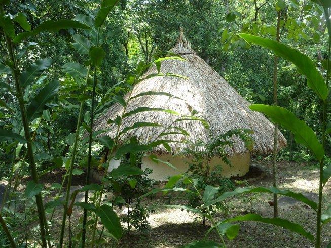 29 Days 200-Hour Immersion Yoga Teacher Training in Santa Marta, Colombia