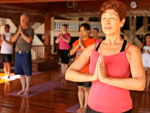 14-Daagse Colon Detox & Yoga Retraite in Thailand