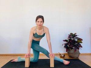 200-Stunden Online Hatha Vinyasa Yogalehrer Ausbildung