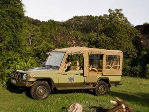 3 Days Maasai Mara Road Safari in Kenya