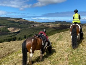 8 Day Scenic Trail Riding Holidays through Scotland's Hidden West Coast in the Mull of Kintyre