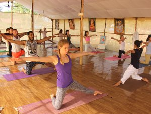11 Days 100-Hour Yoga  Hatha and Ashtanga  Teacher training Course in Varanasi, India