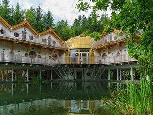 5 Tage Ganzheitliches Sommer Retreat im Wald - Yin Yoga Meditation und mehr Kärnten, Österreich