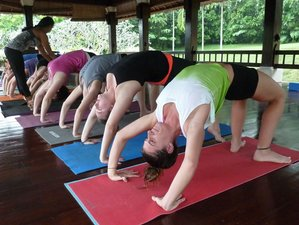 25 Days 200-Hour Yoga Teacher Training in Bali