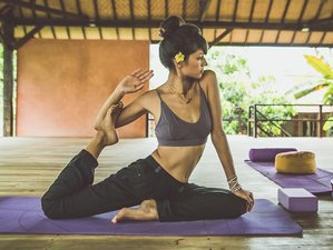 7 Day Gentle and Relaxing Wellness Yoga and Meditation Retreat in Buleleng Regency, Bali