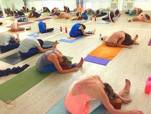 27 Days 250hrs Hot Yoga Teacher Training in France