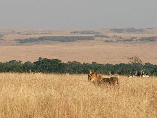 6 Days Wildlife Kenya Safari