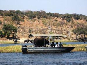 3 días de safari en el Parque Nacional del Chobe
