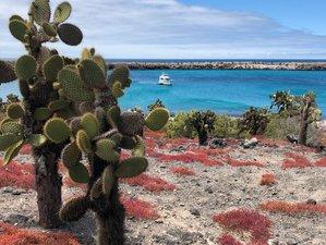 8 Days Yoga Holiday in the Galapagos Islands, Ecuador