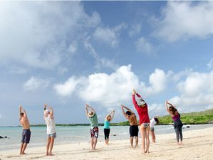 7 Days Thanksgiving Yoga Retreat in Galapagos