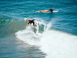 8 Day Pura Vida at Its Best Perfect Surf Camp for All Levels in Playa Avellanas, Tamarindo