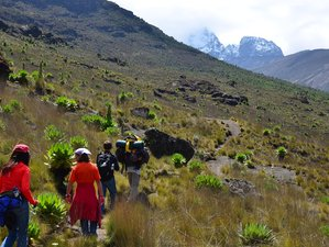 4 Days Mount Kenya Climbing via Sirimon Route Kenya Safari