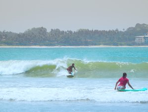 7 Days Paradise Yoga and Surf Camp in Weligama, Sri Lanka