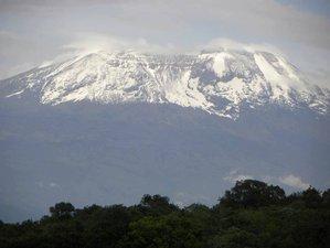 9 Days Machame Route Mountain Climbing Safari in Mount Kilimanjaro, Tanzania