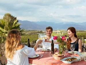 10 Day Food and Wine Lovers Vacation in Sicily, Italy
