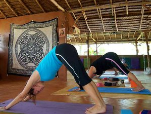 6 Day Level 2 Reiki Healing Course and Yoga Retreat in Ao Nang, Krabi