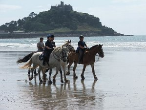 4 Nights Accommodation and 3 Days Ultimate Horse Riding Holiday in Cornwall, UK