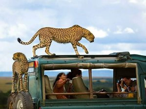 8 Days Best of Kenya Tours and Safaris