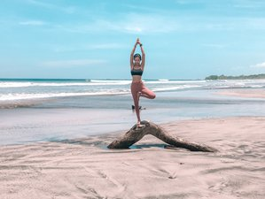 8 Day Yoga Retreat and Wellness Travel in Nosara, Guanacaste