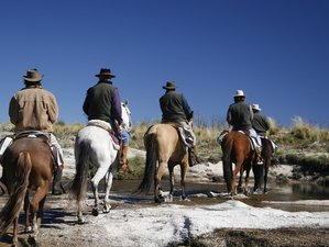 10 Day Horseback Riding Holiday from Traslasierra Valley to Los Gigantes, Argentina