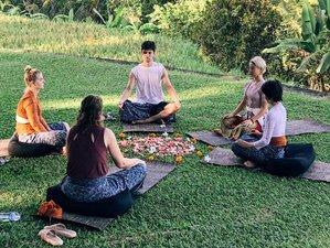 """7 jours en stage de yoga et nutrition holistique """"7 étapes vers le bonheur"""" à Ubud, Bali"""