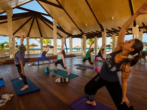 6 Days Women's Yoga Retreat in Aruba