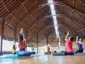 7 Days Path to Happiness Bali Yoga Retreat