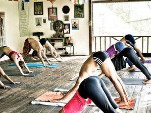 7 Days Yoga Retreat in Koh Phangan, Thailand