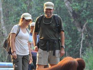 8 Days Orangutan and Wildlife Tour in Tanjung Puting National Park, Indonesia