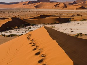 13 Days Fascinating Classic Safari in Namibia