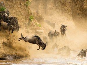 4 Days Nakuru and Masai Mara Safari in Kenya