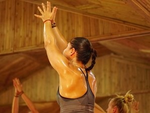 18 Days 200-Hours Holistic Healings and Yoga Therapy-Based Yoga Teacher Training in Rishikesh, India