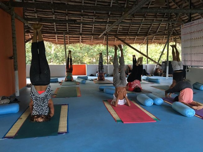 28 Days 200hr Vinyasa Yoga Teacher Training in Varkala, Kerala