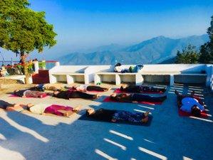 30 Day 200-Hour Yoga Teacher Training and Vipassana Retreat in Rishikesh