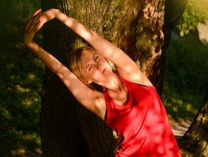 7 Tage Detox Yoga Retreat mit Basenfasten & Wandern in der Eifel, Deutschland