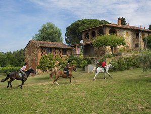 8 Day Horse Riding and Dining Tuscan Holiday in Tuscany, Province of Arezzo