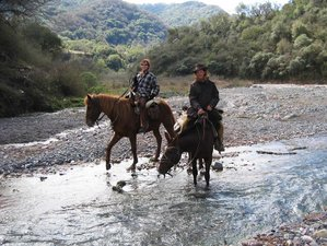 3 Day Mountain Horse Riding and Camping Holiday in Salta