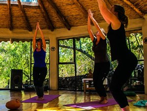 8 Days Living Authentically Meditation and Yoga Retreat Cusco Region, Peru