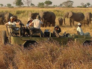 9 Days Treasures Wildlife Safari in Tanzania