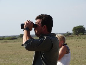 14 Day Photographic Safari Tour in South Africa and Botswana