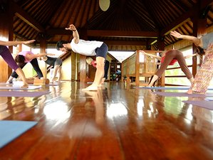 8 Days Blissful Yoga Retreat in Ubud, Bali