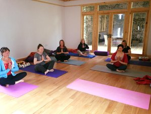 3 Days Holistic Meditation and Yoga Retreat in Wales, UK