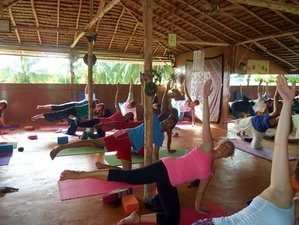 8 Day Reiki Master Course, Meditation, and Yoga Retreat in Ao Nang, Krabi