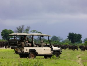 4 Days Luxury Safari in Botswana