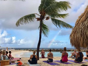 6 Days Yoga and Volunteer Dog Rescue Retreat in Curaçao