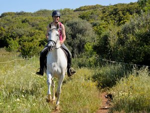 6 Days with a 3-Day Beginners Horse Riding Adventure and Yoga in the Beautiful Algarve, Portugal