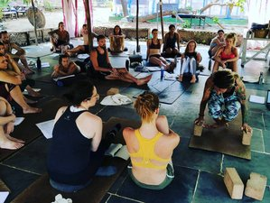 8 Day Energizing Yoga Holiday in Goa