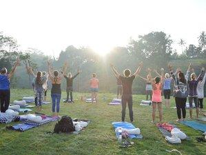 """32 Tage 300-Stunden """"Sanfter Körper"""" Yogalehrer Ausbildung Goa, Indien"""