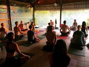 25 Days 200-Hour Breath and Balance Yoga Teacher Training in Koh Phangan, Thailand